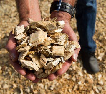 abnee-biomasse